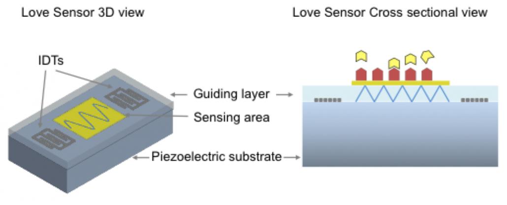 AWS Biosensors technology