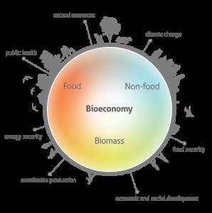 Bioeconomy figure; food, biomass, public health, energy security, sustainable production, economic and social development