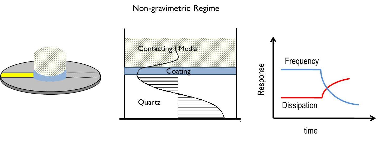 Non gravimetric regime QCM